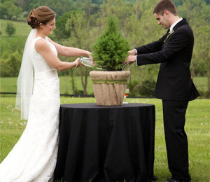 Unity Tree  Planting Wedding Ceremony